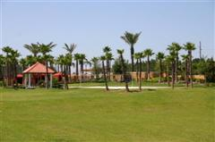 Solana Resort Florida - Recreation Field